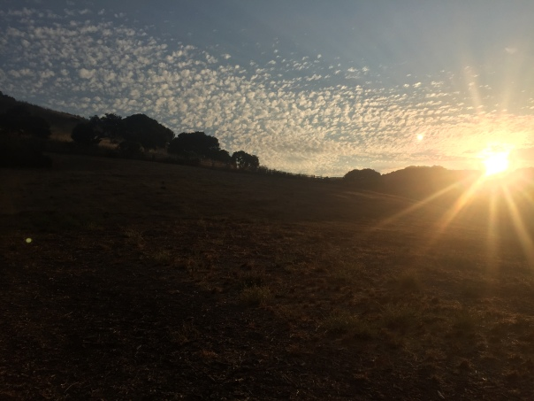 Sunrise photo by Hana Wilkins